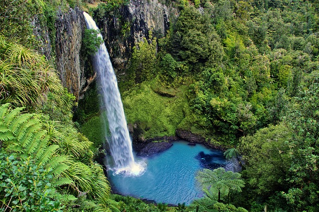 , bridal veil fall, new zealand, waterfall, nature