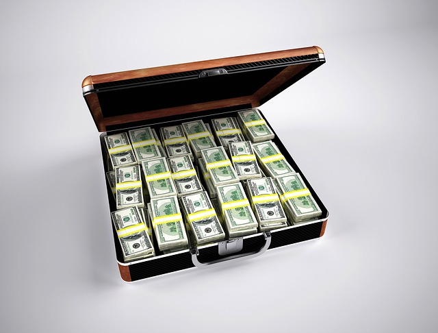 , money, finance, wealth, currency, dollar, briefcase