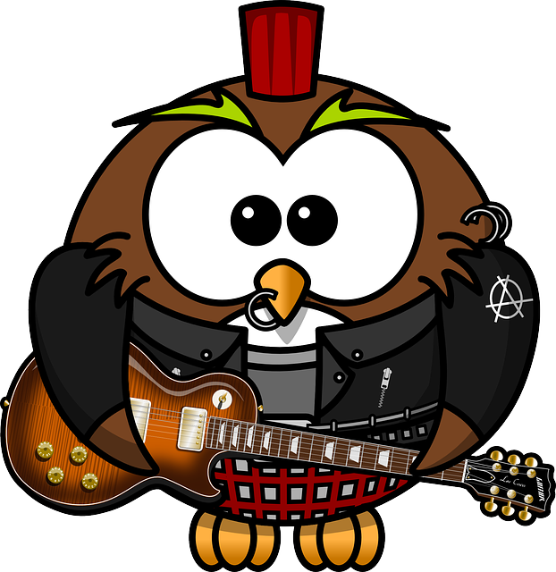 , owl, anarchy, animal, bird, brads, funny, guitar