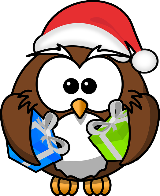 , owl, santa, animal, bird, christmas, funny, gift