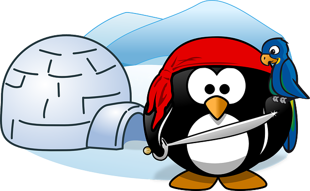 , pirat, tux, animal, bird, cold, ice, igloo, parrot