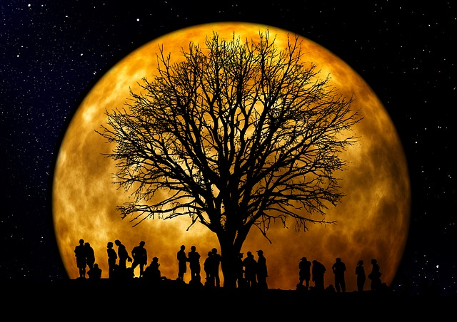 , tree, kahl, moon, human, group, silhouette, background
