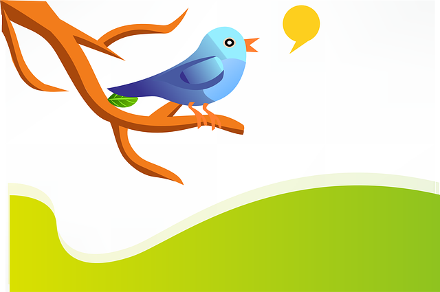 , tweet, twitter, bird, blue, twig, branch, green, hills