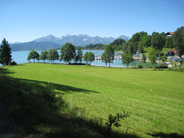 allgäu, easter pure, bay, water, meadow, bruise