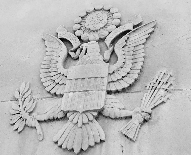 america, american, eagle, great, seal, united, states