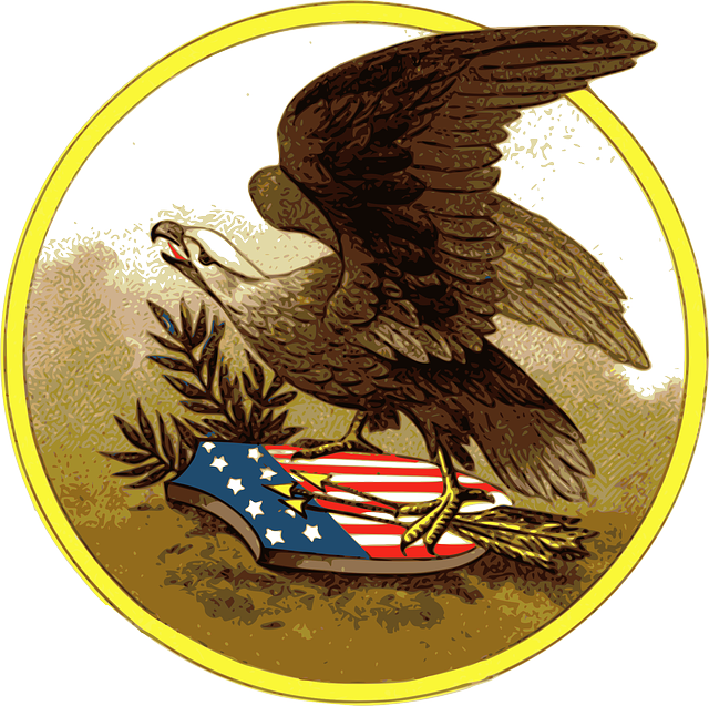 american, eagle, patriotic, usa