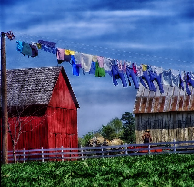 amish farm, rural, horse, field, barn, shed, wagon