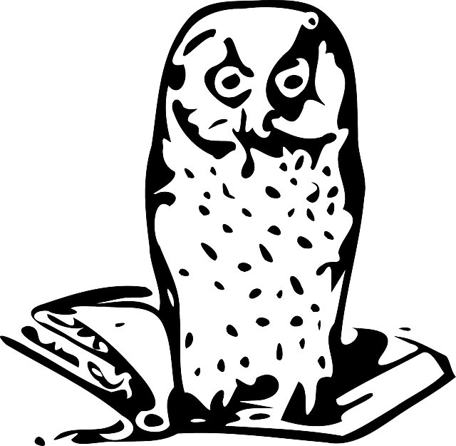 animals, birds, bird, owl, books, book, animal, open
