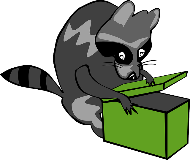 animals, box, cartoon, mammals, raccoon, animal, mammal