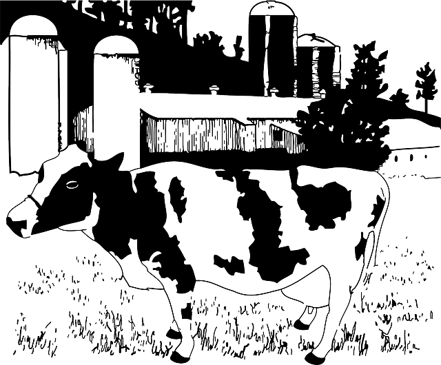 animals, cartoon, farm, cow, mammals, milk, dairy