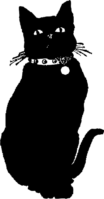animals, cat, silhouette, cartoon, dog, mammals, cute