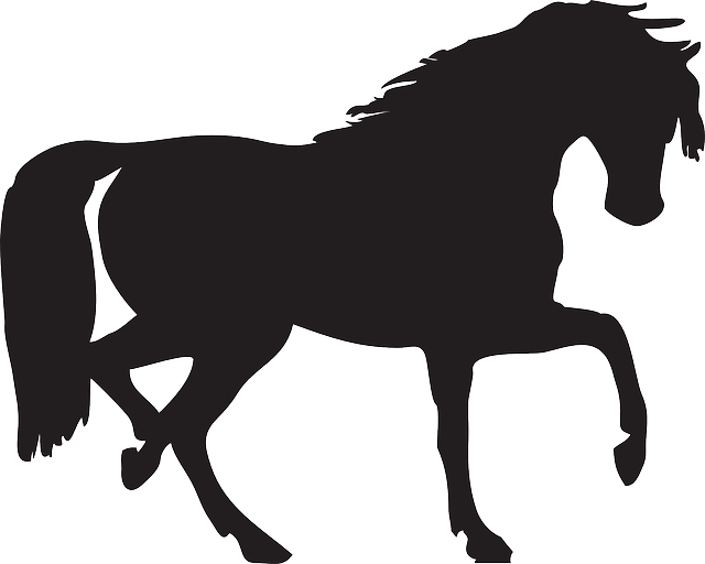 animals, head, silhouette, cartoon, dog, horse, mammals