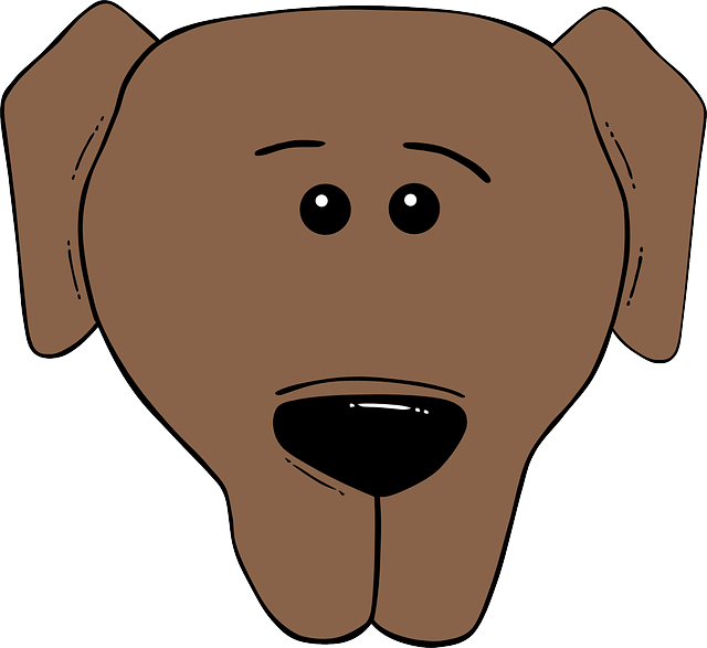 animals, head, world, faces, face, cartoon, dog