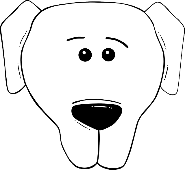animals, head, world, faces, face, cartoon, template