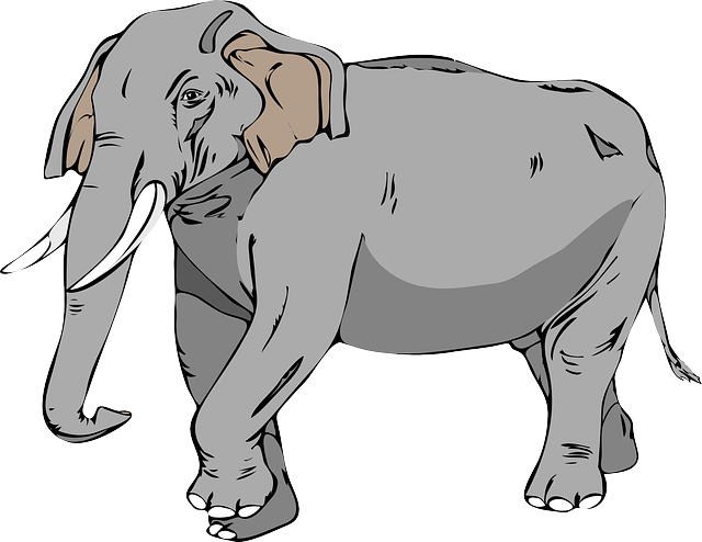 animals, large, cartoon, big, mammals, elephant, mammal
