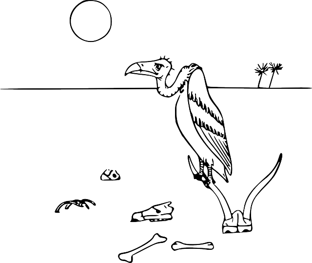 animals, plants, cartoon, bird, hungry, animal, desert