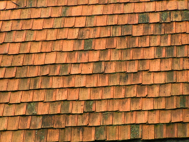architecture, background, tile, shingle