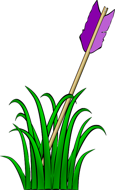 arrow, feather, cartoon, purple, grass, ground, hit