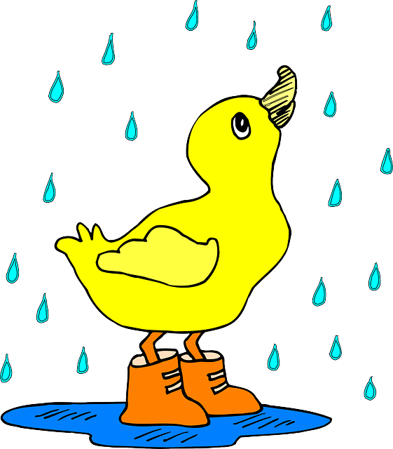 baby, bird, duck, rain, art, boots, the, puddle, boot