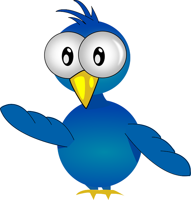 baby, eyes, blue, small, bird, fly, chick