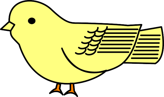 baby, simple, yellow, cartoon, bird, chick, animal