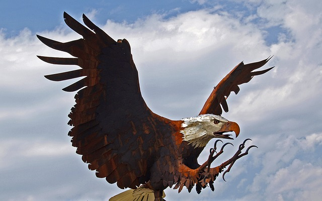 bald, eagle, bird, animal, landing, metal, rust