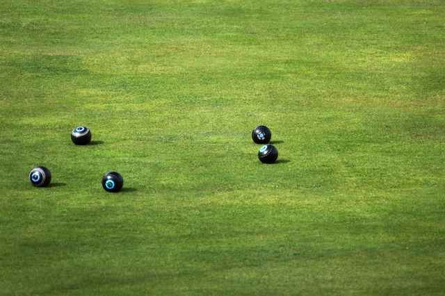 ball, bowl, bowls, bowling, field, game, grass, green