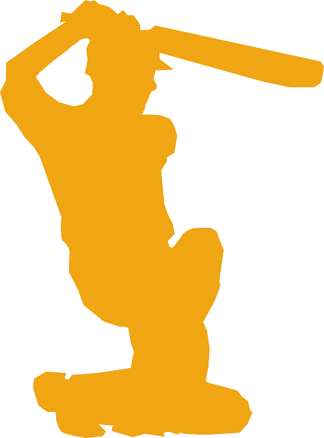 baseball, baseball bat, kneeling, player, silhouette