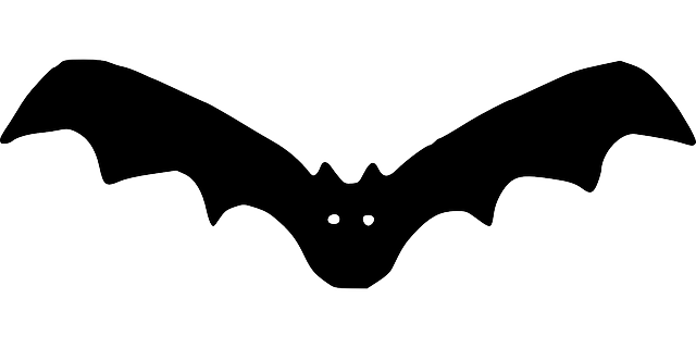 bat, outline, cartoon, flying, night, dark, vampire