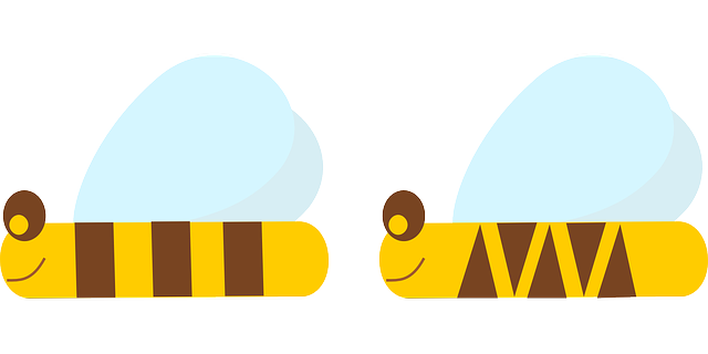 bee, hive, insects, simple, comic