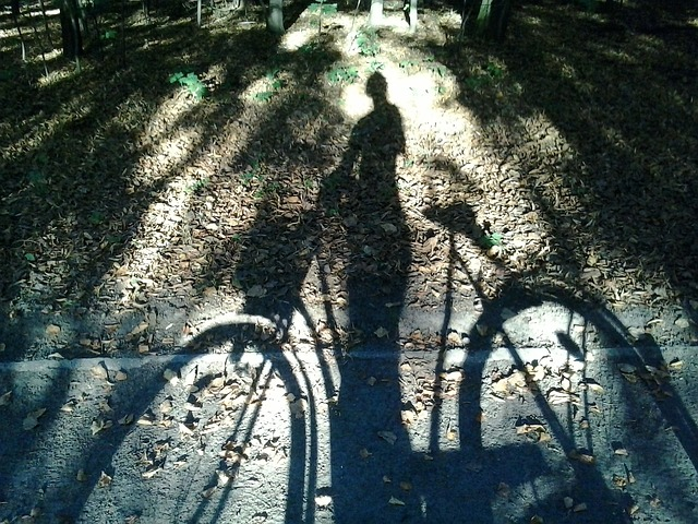 bike, las, shadow, character, light, way, horse