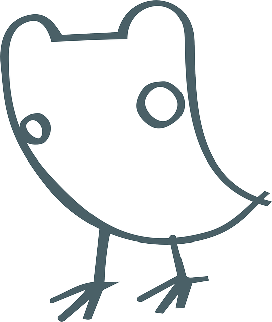 bird, birdie, stylistic, simple, animal