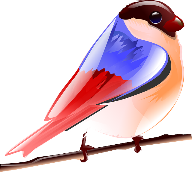 bird, fly, nature, red, blue, colorful
