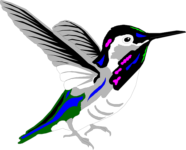 bird, style, wings, art, hummingbird, multicolored