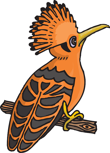 black, cartoon, orange, bird, branch, wings, feathers