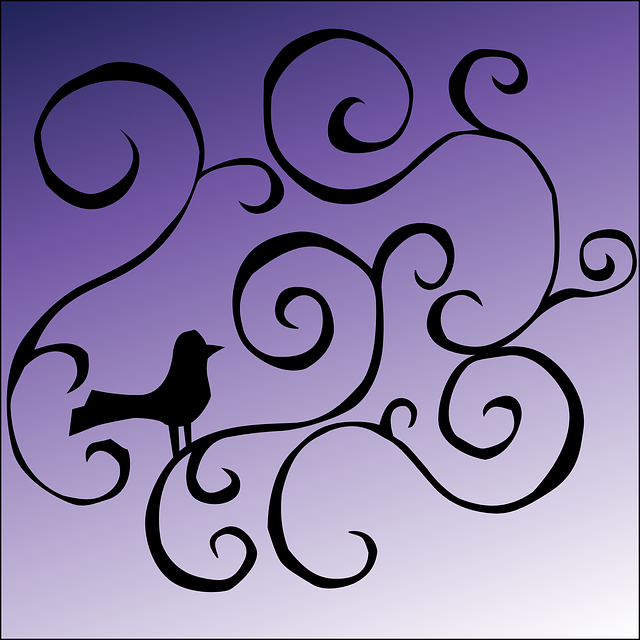 black, silhouette, design, purple, bird, lines, curls