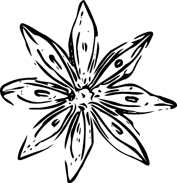 black, simple, outline, drawing, design, flower, white