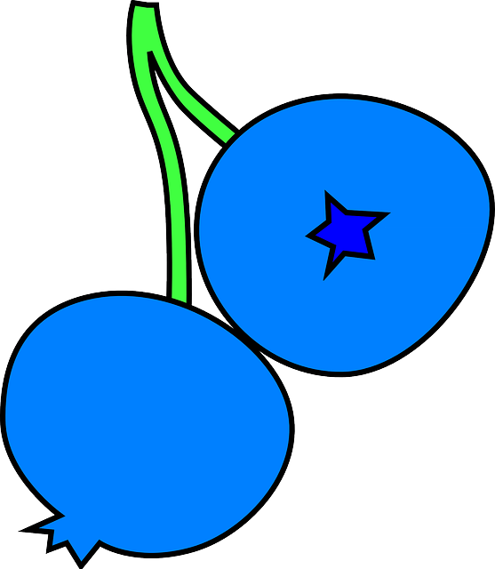 black, two, berries, blue, fruit, outline, drawing