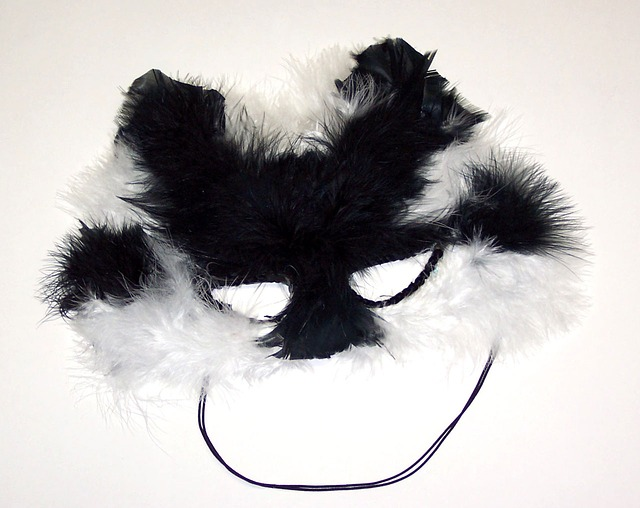 black, white, cat, mask, feather, feathers, carnival