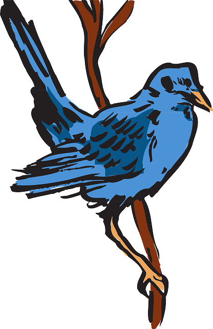 blue, bird, art, animal, feathers, perched