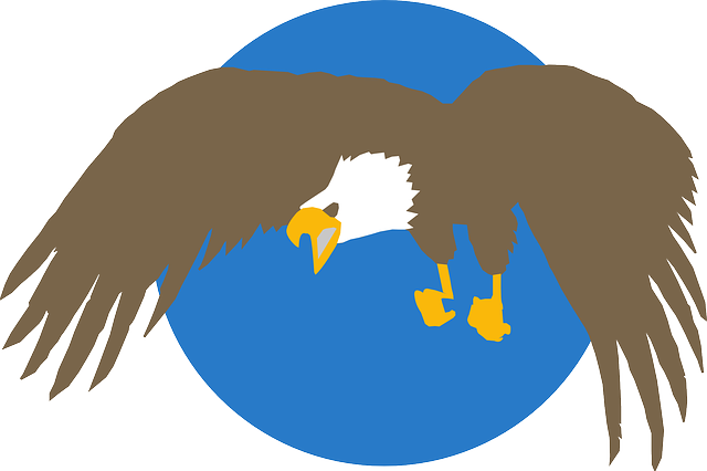 blue, circle, cartoon, eagle, background, wings, bald
