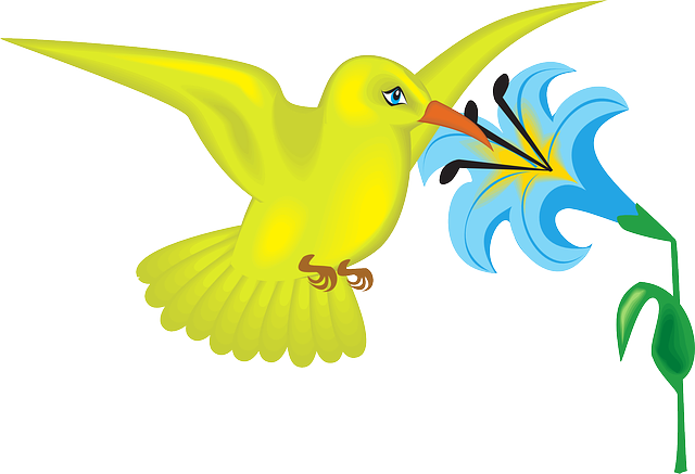 blue, yellow, flower, bird, plant, wings, leaves