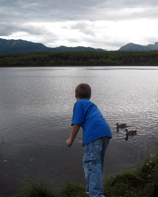 boy, alaska, lake, mountains, ducks, water, bird