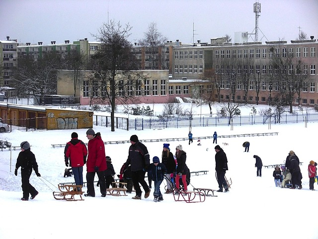 boys, girls, women, men, playing, sled, winter, snow