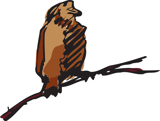 brown, bird, wings, art, animal, feathers, perched
