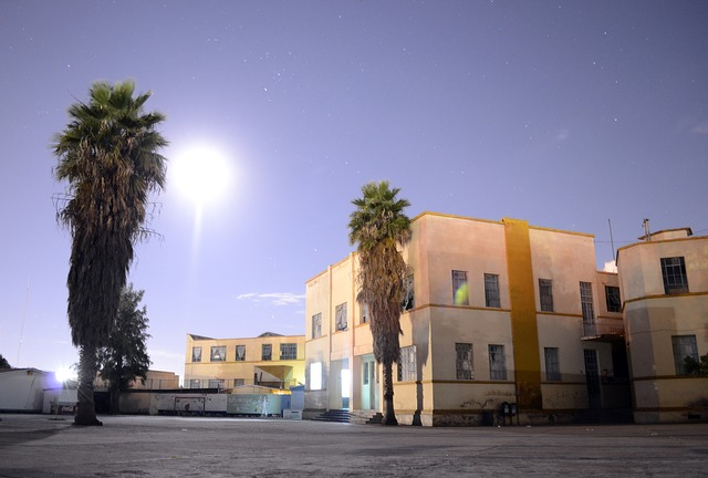 building, night, school, street, buildings, dusk
