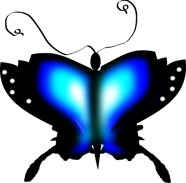 butterfly, insect, blue, black