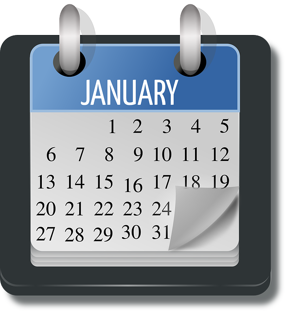 calendar, january, month, organizer, appointment