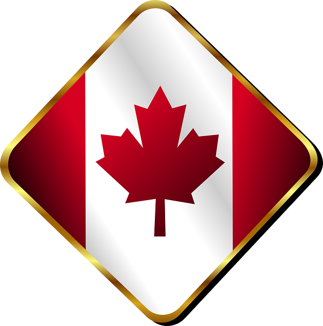 canada, canadian, country, flag, leaf, maple, pin