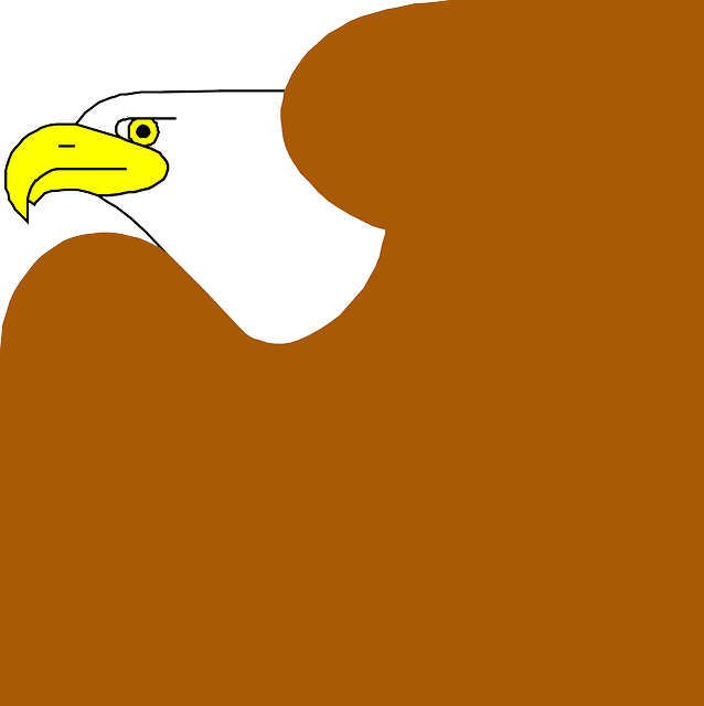 cartoon, eagle, bird, wings, art, beak
